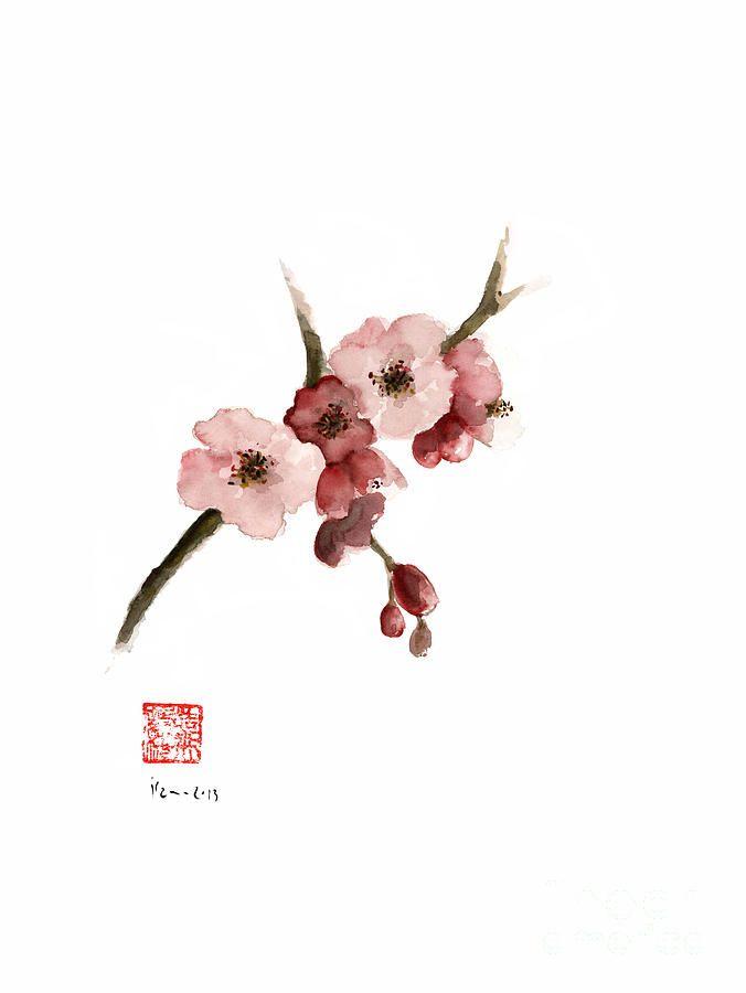 Cherry Blossom Sakura Pink Tree Delicate White Flower Flowers ...