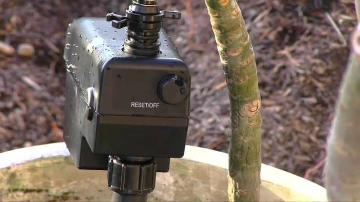 ScareCrow sprinkler--motion sensitive way to keep animals out of yard/garden    http://youtu.be/5ru1Jv6g974