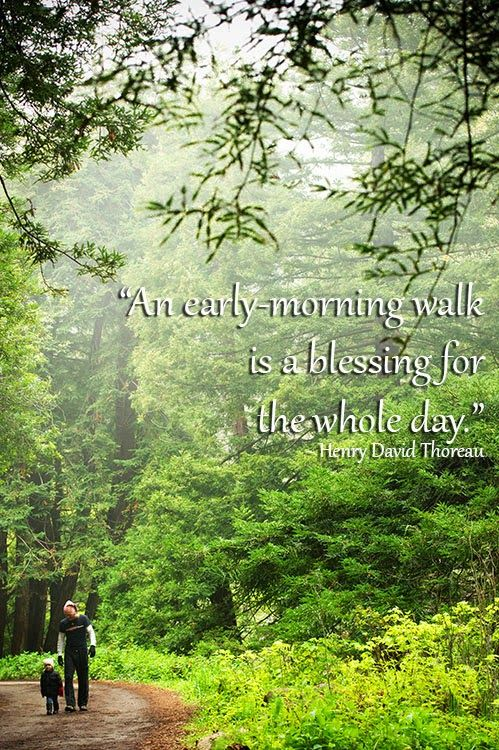 """[Wandering Wisdom Wednesday] """"An Early-Morning Walk is a Blessing For the Whole Day."""" ~ Henry David Thoreau 