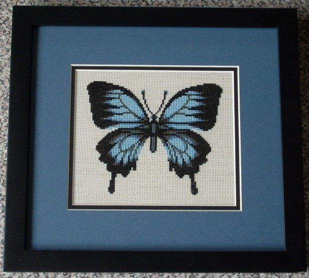 Ulysses Butterfly by SmiteTheeWithApples.deviantart.com on @deviantART