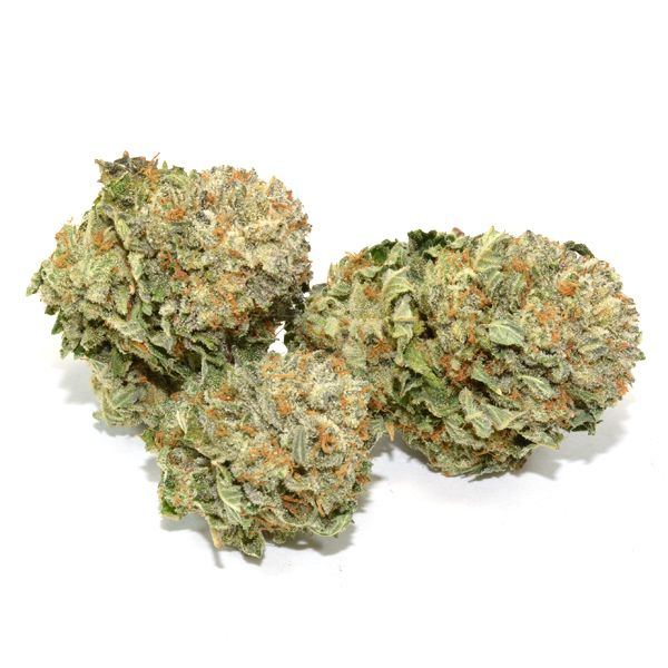 The Chemdawg Strain is a legendary strain with an uncertain genetic history. While it is thought to be crossed from Thai and Nepalese sativa landraces by U.S. breeders, many have laid claim to this strain's creation.