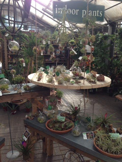 1000+ Images About Garden Center Merchandising Display