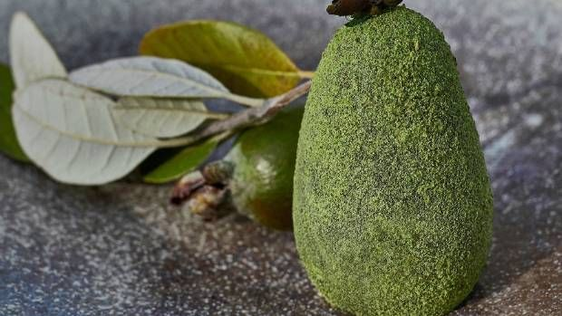 Vaughan Mabee's feijoa dessert is created from blown feijoa sugar glass, dusted in its candied skin, filled with wild ...
