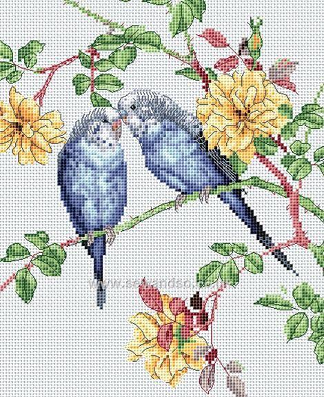Budgie Love Cross Stitch Kit