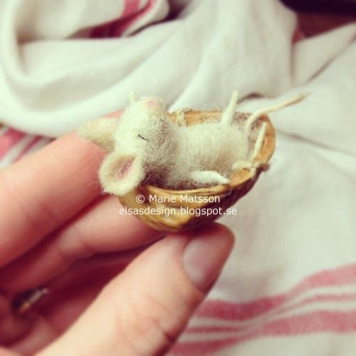 Awww - Here's an itsy bitsy little Mouse, sleeping in a teeny weeny walnut shell. - so cute!