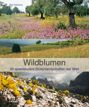 Gibbons, Bob «Wildblumen. 50 spektakuläre Blütenlandschaften der Welt» | 978-3-258-07752-9 | www.haupt.ch