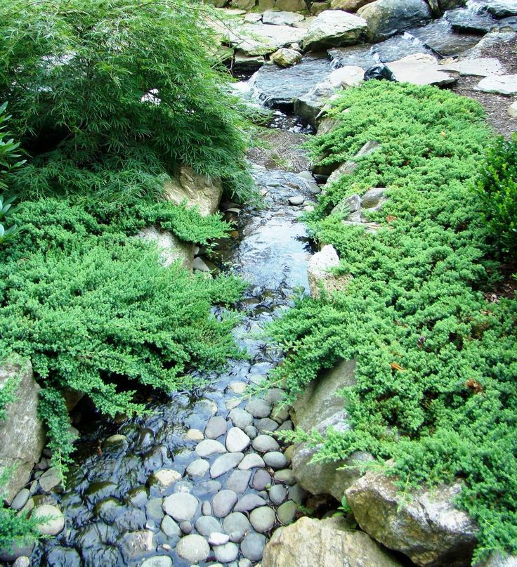 Best 25+ Garden stream ideas on Pinterest | Modern pond ...