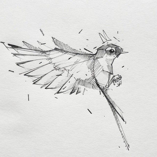 Рисунки необычных птиц карандашом
