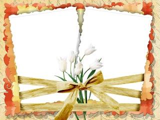 SYEDIMRAN: Romantic-Frame