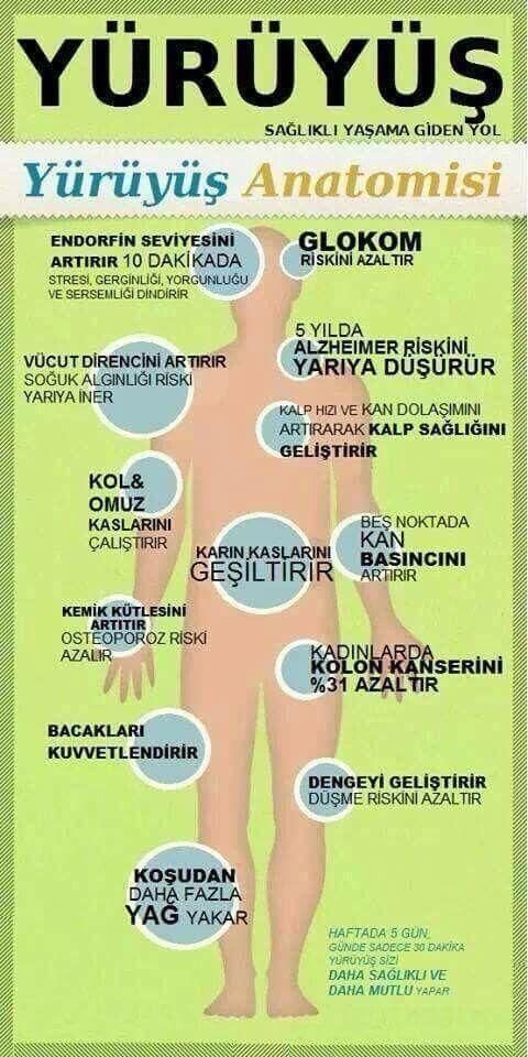 Yürüyüş anatomisi