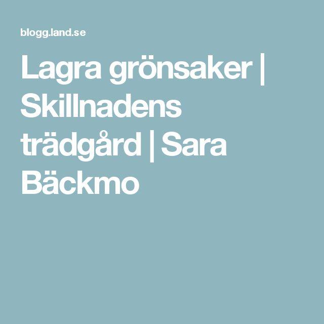 Lagra grönsaker | Skillnadens trädgård | Sara Bäckmo