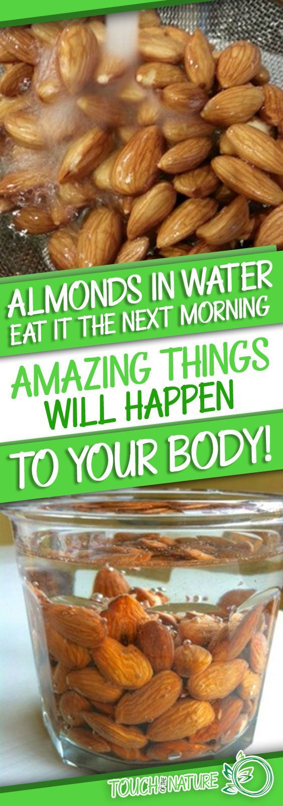 Did you know that dried almonds have health benefits that make fun of your mind? Almonds can make a world of good when it comes to your health, as they are full of necessary vitamins and minerals like vitamin E, zinc, calcium, magnesium, and omega-3 fatty acids. WHY IS IT BETTER TO TAKE ALMONDS IN WATER BEFORE CONSUMING?