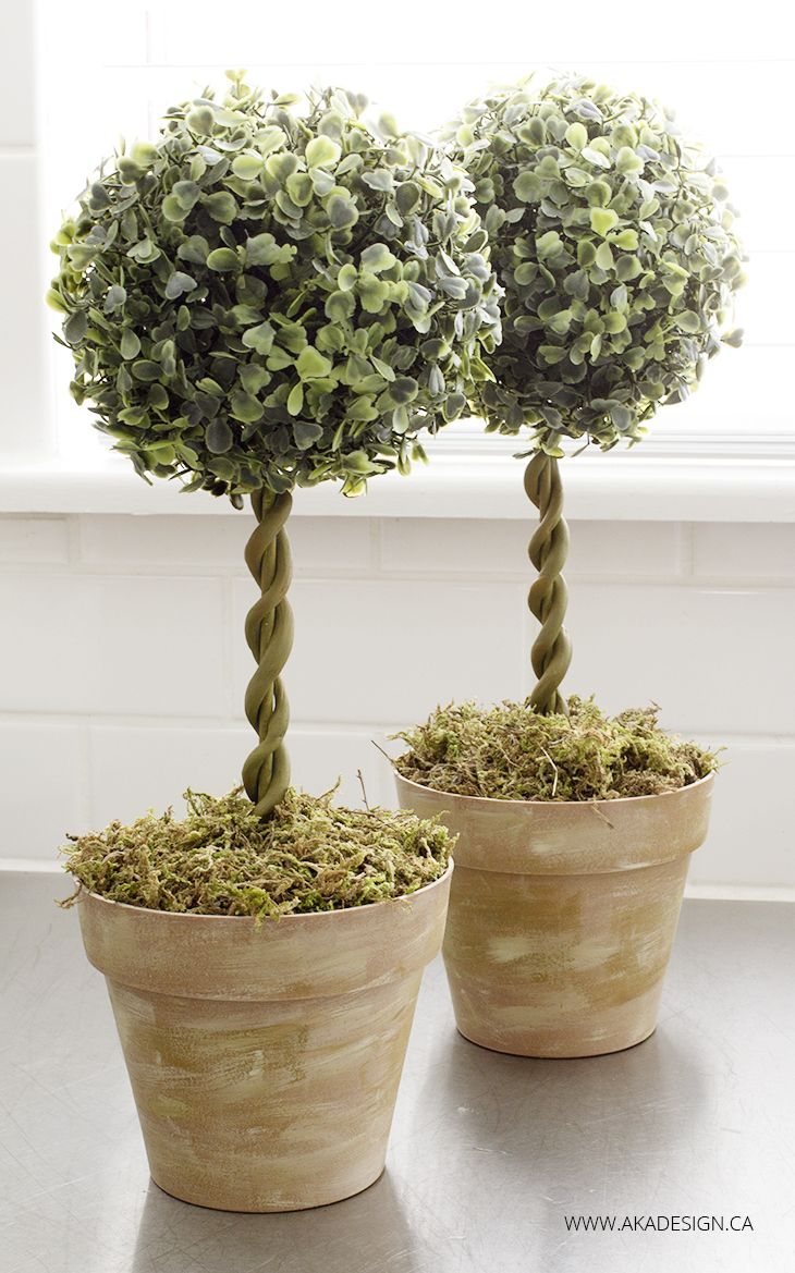 diy topiary trees in bamboo pots made to look like terra cotta