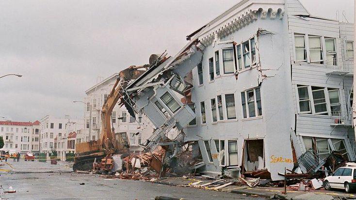 Fact or fiction can animals sense natural disasters