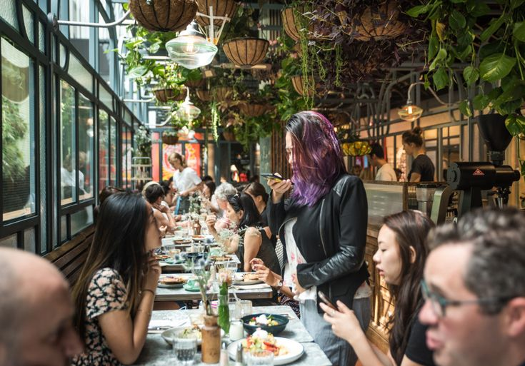 A cafe that feels like a greenhouse with ties to The Grounds.
