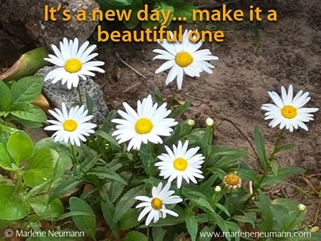It's a new day... ... make it a beautiful one. Inspirational quotes by Marlene Neumann. Photographer, teacher, author, philanthropist, philosopher. Marlene shares her own personal quotations from her insights, teachings and travels. Order your pack of Inspirational Cards! www.marleneneumann.com