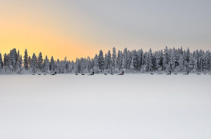 LAPLAND  Bucket list-materiaal: een tripje naar Lapland – inclusief de sleetocht met huskies, de sauna-bezoekjes, slapen in een eskimo-tent en openlucht bbq. Om het allermooiste niet te vergeten: de waanzinnige natuur en het prachtige licht. Terug naar de basics, moeder natuur.