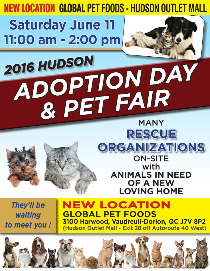 #Montreal #Quebec animal rescue <3 Join us today at the Hudson Pet Fair, 11-2pm! Don't miss the chance to meet and adopt LUPINE & RUTHIE ~ www.facebook.com/cause4paws