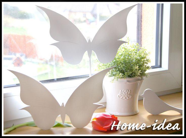 zestaw motylków