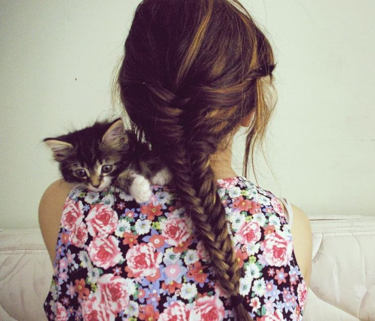 ah so pretty fish bone: Fish Tail, Hairstyles, Kitty Cat, Fish Braids, Shirts, Long Hair, Baby Kittens, Fishtail Braids Tutorials, Kittycat