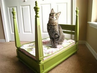 Dog or cat bed made out of an upside down end table! GENIUS!: Dogs Beds, Cat Beds, Small Tables, Idea, Side Tables, Pet Beds, End Tables, Four Posters Beds, Dolls Beds
