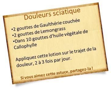 Huile essentielle de Gaulthérie couchée : Nos recettes pour les Courbatures, tendinites, douleurs musculaires ou aux dents, rhumatisme, sciatique.
