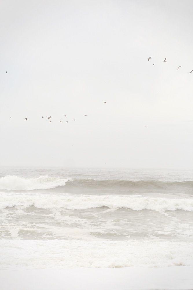 Ocean Primitive's Inspirations