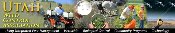 Utah Weed Control Association - Utah's noxious weed control experts
