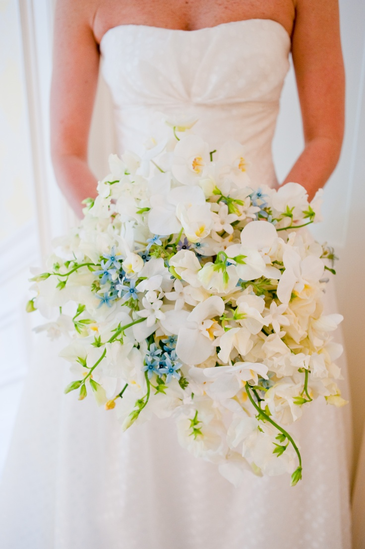 Cascading bouquet of White Sweet pea and Tweedia
