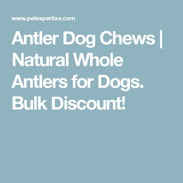 Antler Dog Chews | Natural Whole Antlers for Dogs. Bulk Discount!
