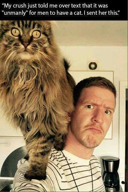 Don't listen to people like that! I love men who love cats!