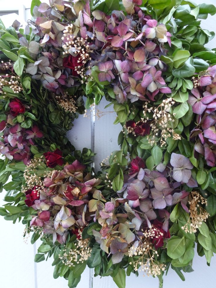 Dried Wreath Boxwood Wreath Dried Boxwood Wreath Hydrangea