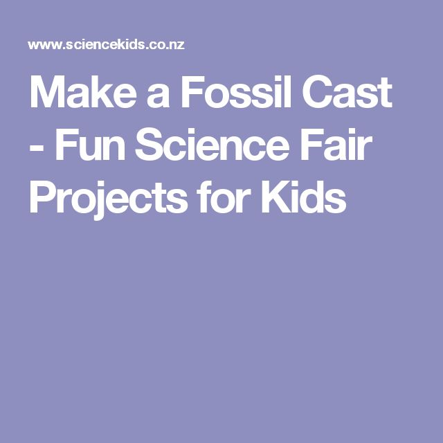 Make a Fossil Cast - Fun Science Fair Projects for Kids
