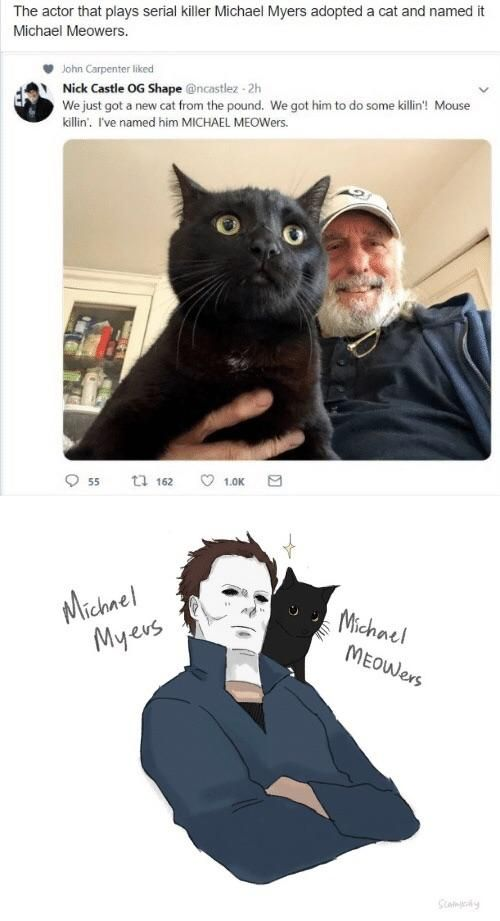 Michael Myers and his little sidekick-Michael Meowers | Why