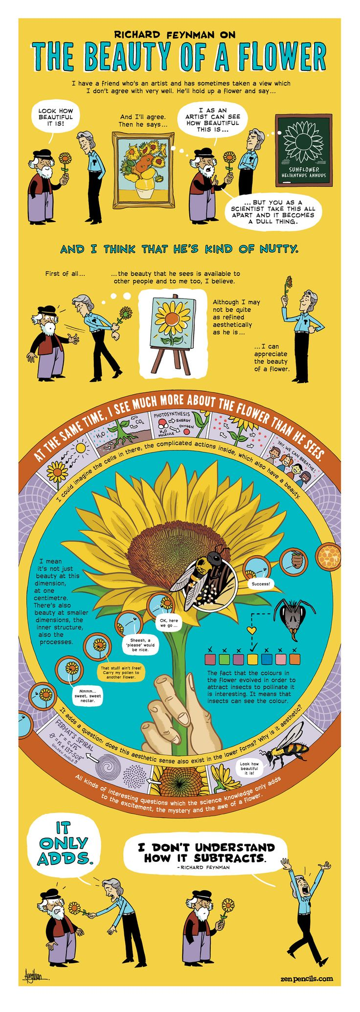 """Australian cartoonist Gavin Aung Than illustrates interesting quotes uttered by interesting people. I love this intricate, stunning visual storytelling. Here is """"Richard Feynman on the beauty of a flower,"""" from """"Zen Pencils""""."""