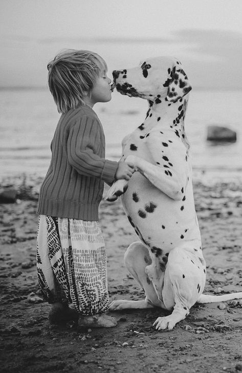 Little boy dancing with Dalmation