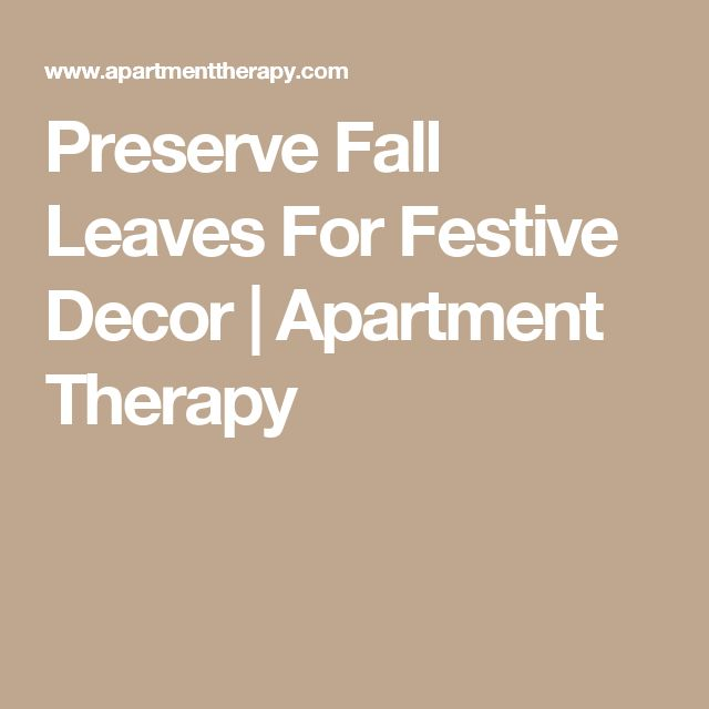 Preserve Fall Leaves For Festive Decor | Apartment Therapy