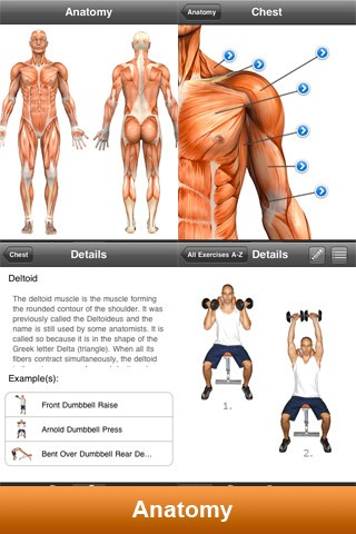 Fitness Pro mobile app