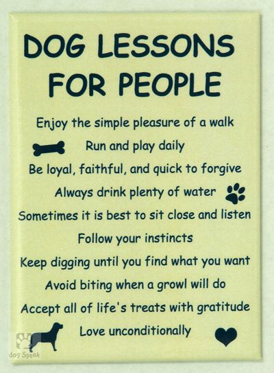 Dog Lessons for People. I love my puppy dog