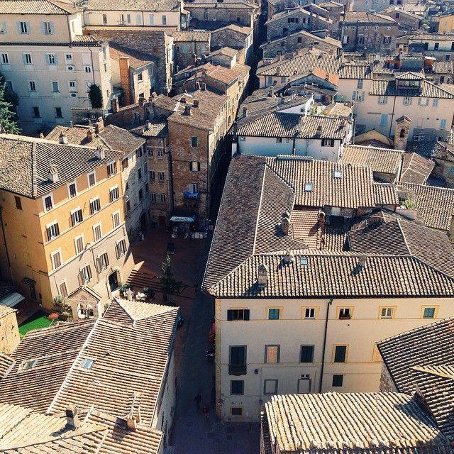 Ciò che è aggrovigliato avrà certamente a che fare col futuro. #Perugia2019 foto di @alessandrabacci