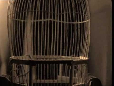 """Βίκυ Μοσχολιού - """"το δίχτυ"""" - Σταύρος Ξαρχάκος"""