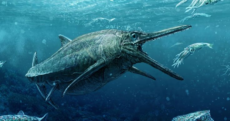 Após 50 anos, monstro marinho do Jurássico sai do anonimato