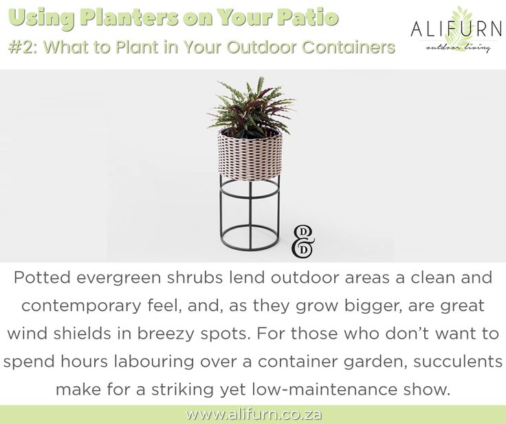 Not sure what to plant in your new #PatioPlanter? Here are some ideas… #OutdoorFurniture #PimpMyPatio