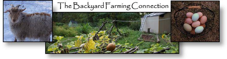 The Backyard Farming Connection