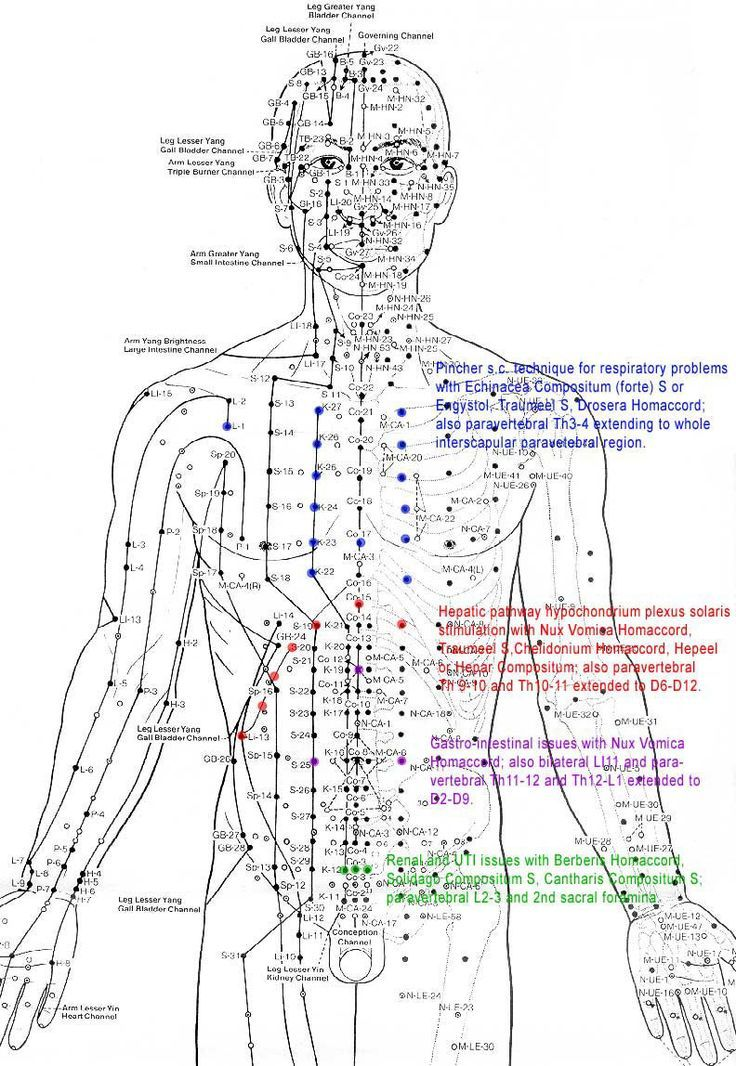Acupuncture Points Chart 1000+ ideas about <b>acupuncture points chart</b> on pinterest ...
