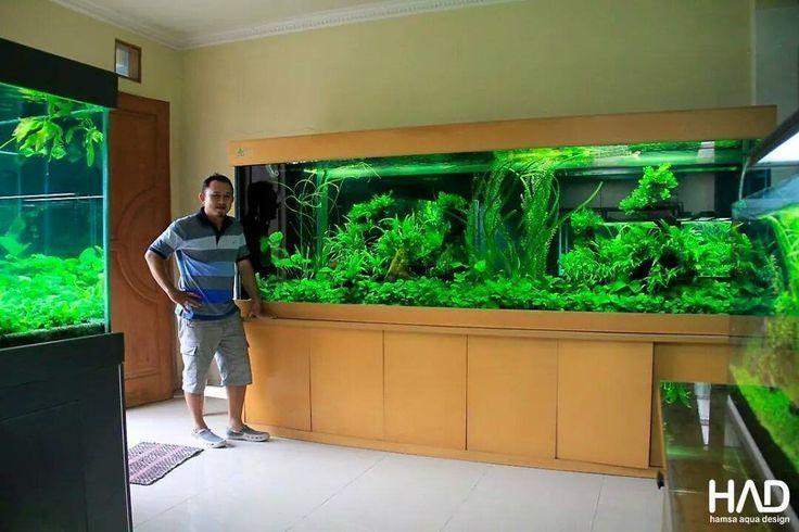 10 Best Diy Aquarium Canopy Inspiration Images On