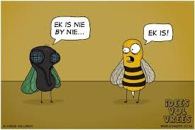 Image result for idees vol vrees afrikaans
