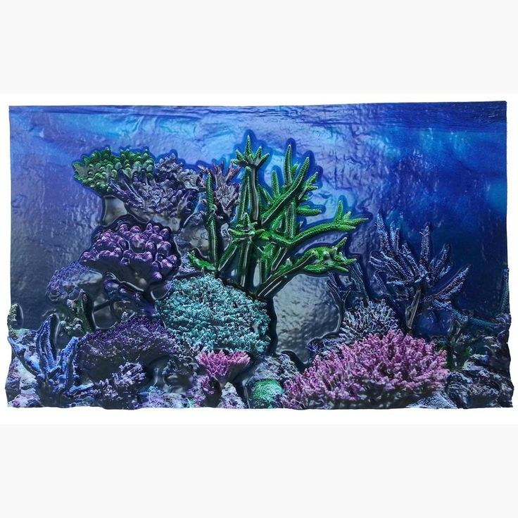 """Biobubble 3d Background Coral Reef 10 Gallons 20"""" X 10"""""""