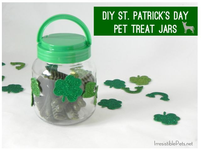DIY St Patricks Day Pet Treat Jar via IrresistiblePets.net