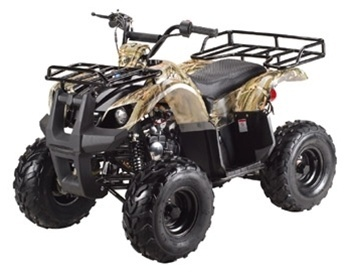 TaoTao Kids Quad 125cc 4 Wheeler Free shipping, Cheap 125 taotao ATVs, Kids 4 Wheelers, tao tao 125cc Quads, Texas dallas fort worth